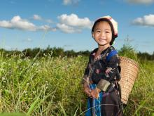 asian_hmong_girl_on_rice_paddy_t