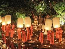 Chiangmai Night