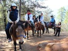 Horse Riders in Bhutan